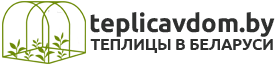 logo1_teplicavdom old plus.png